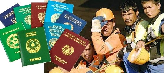 dms-migrant